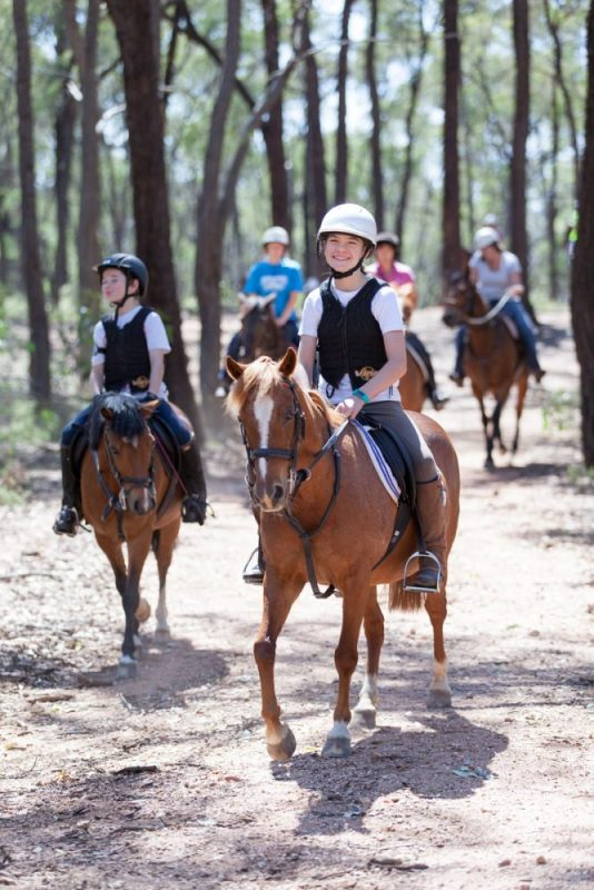 Trail ride for the Chiltern Mo-Ride 2015 horses riding in Chiltern Mt Pilot National Park